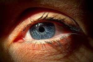 dvojni vid