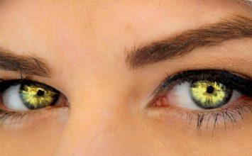 Korenček? Ne, za vaše oči je odlično grozdje!