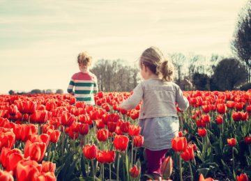 Alergija – kako jo preprečiti in zdraviti?