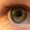 kontaktne leče