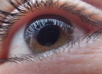 Mečete kontaktne leče v straniščno školjko?